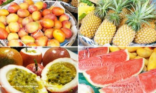 fruit07-3