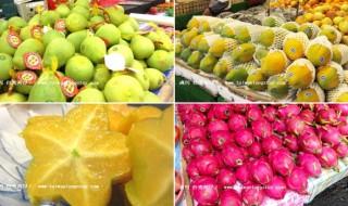 fruitseptop-1