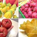 fruit10