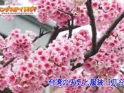 台湾の天気と服装~3月&4月編 【3月の天気服装リアルレポート掲載中】